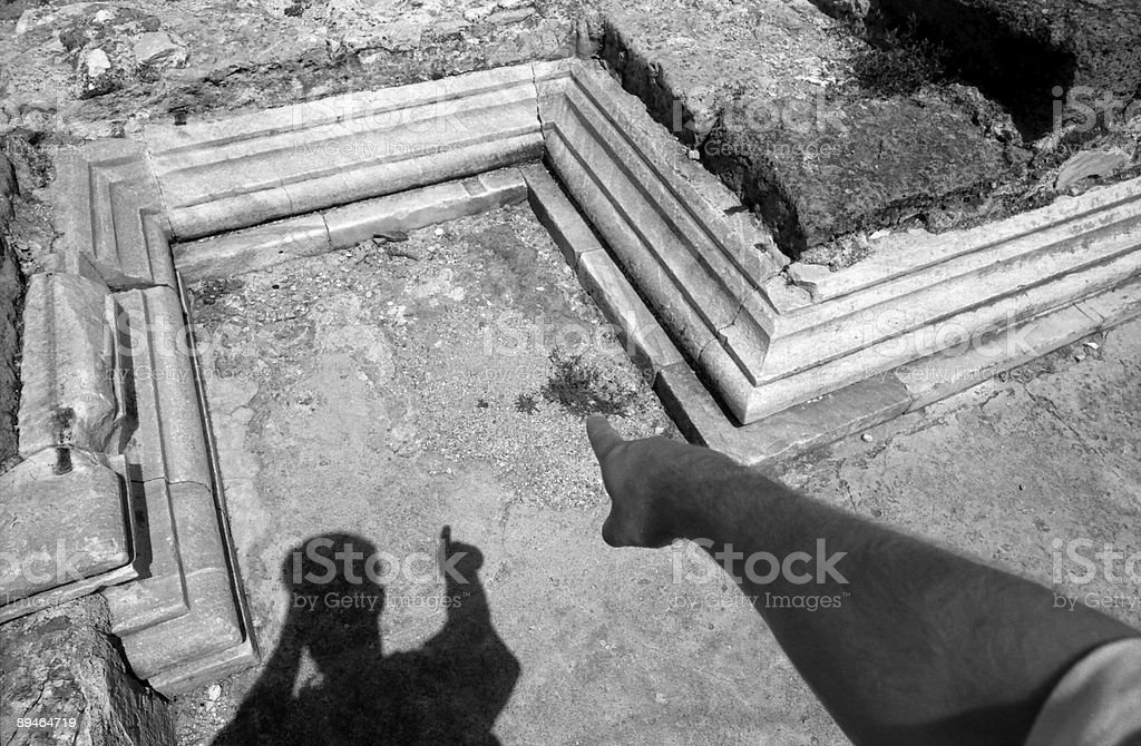 Plant and Stone Remainings royalty-free stock photo
