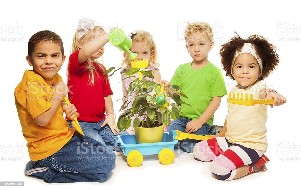 Plant and water royalty-free stock photo