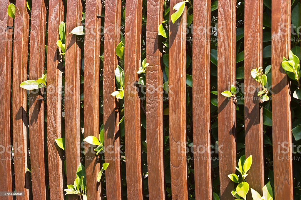 Plant and Wood balusters background stock photo