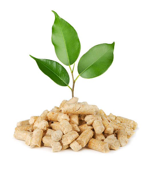 Plant and wood pellets stock photo