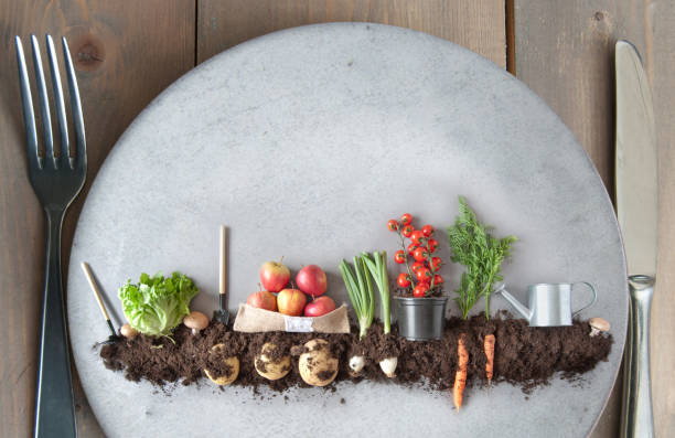 Plant based diet concept, organic garden Organic fruits and vegetables garden on a kitchen plate vegetarian stock pictures, royalty-free photos & images