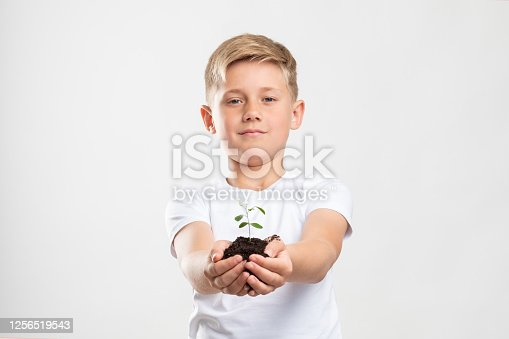 Plant in caring hands. Sustainable Earth. Friendly young boy showing green seedling growing in soil isolated on white.