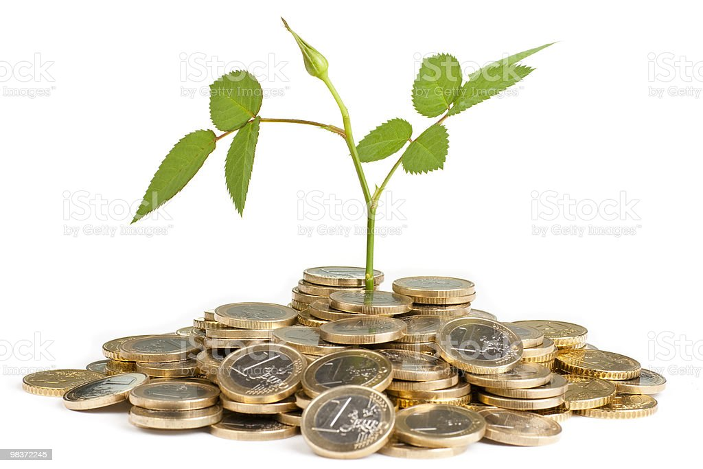 Plant growing between a bunch of coins royalty-free stock photo