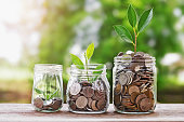istock Plant growing Coins in glass  jar with investment financial concept and green nature sunlight 689524540