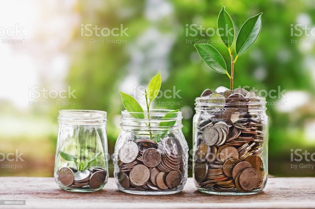Plant growing Coins in glass  jar with investment financial concept and green nature sunlight stock photo