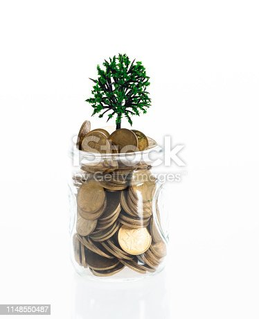 Plant growing from coin jar.