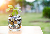 istock Plant growing from coin jar 842386372