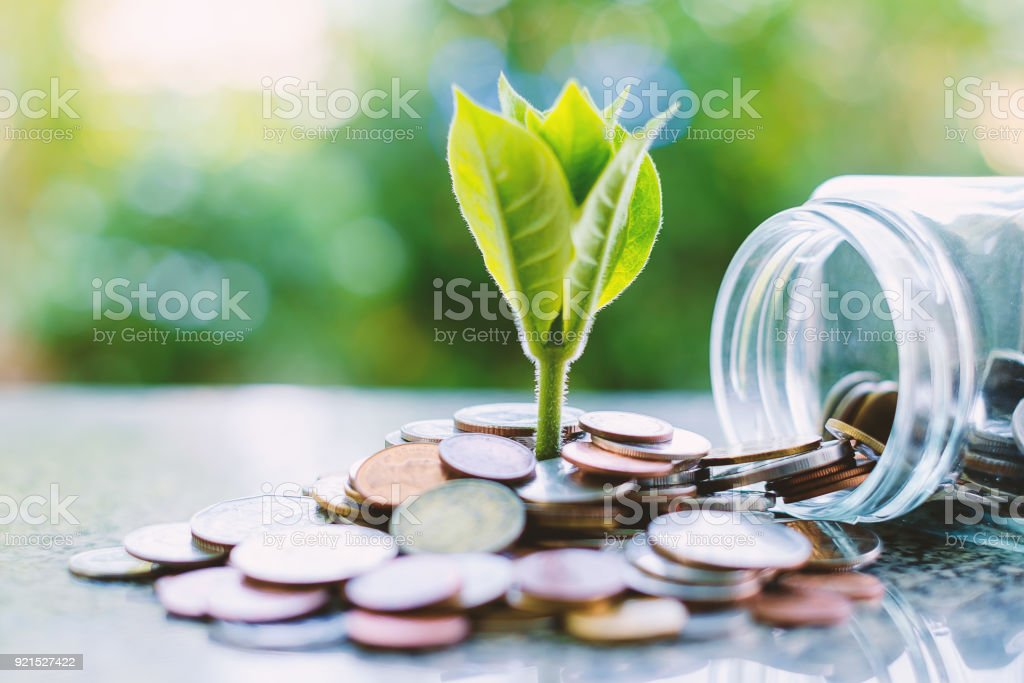 Plant growing from coins outside the glass jar on blurred green natural background for business and financial growth concept - Foto stock royalty-free di Affari