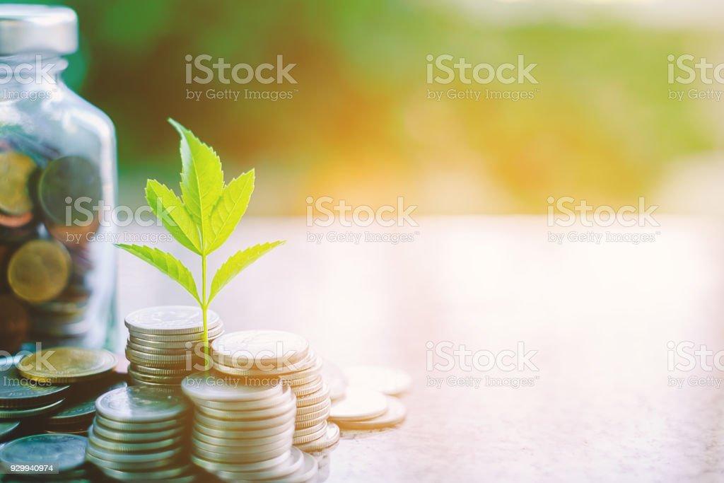 投資、ビジネス、金融の成長概念のコピー スペースと日光の効果を持つ自然な背景をぼかした写真緑のガラス瓶の外の硬貨から成長している設備します。 ロイヤリティフリーストックフォト