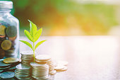 istock Plant growing from coins outside the glass jar on blurred green natural background with copy space and sunlight effect for investment, business and financial growth concept 929940974