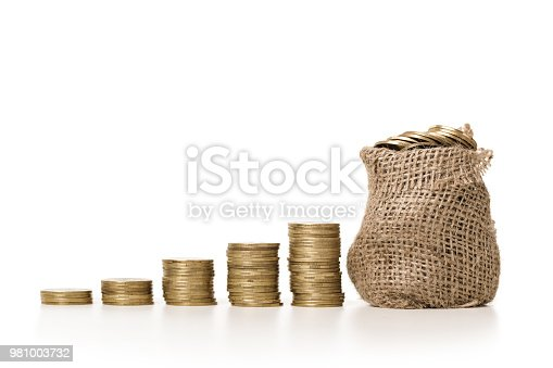 482747823istockphoto Plant growing in bag of coins 981003732