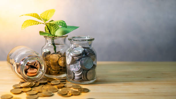 Pflanzen in Münzgefäß. Geldsparkonzept – Foto