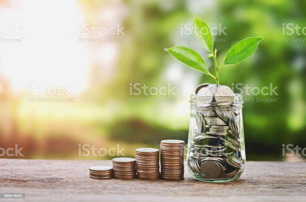 Plant growing on Coins glass jar  and concept money saving stock photo