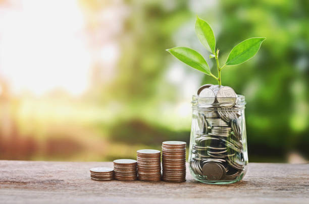 plant growing on coins glass jar  and concept money saving - interest rate stock photos and pictures
