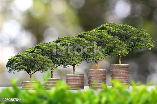 istock plant Growing on coins stack - Investment And Interest Concept - finance sustainable development. 1070887644
