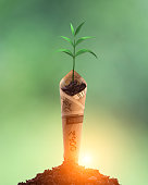 istock Plant growing with bank note on soil 1330052283