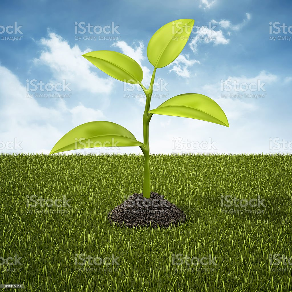 plant in dirt heap royalty-free stock photo