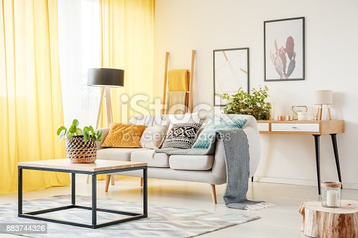 istock Plant in warm living room 883744326