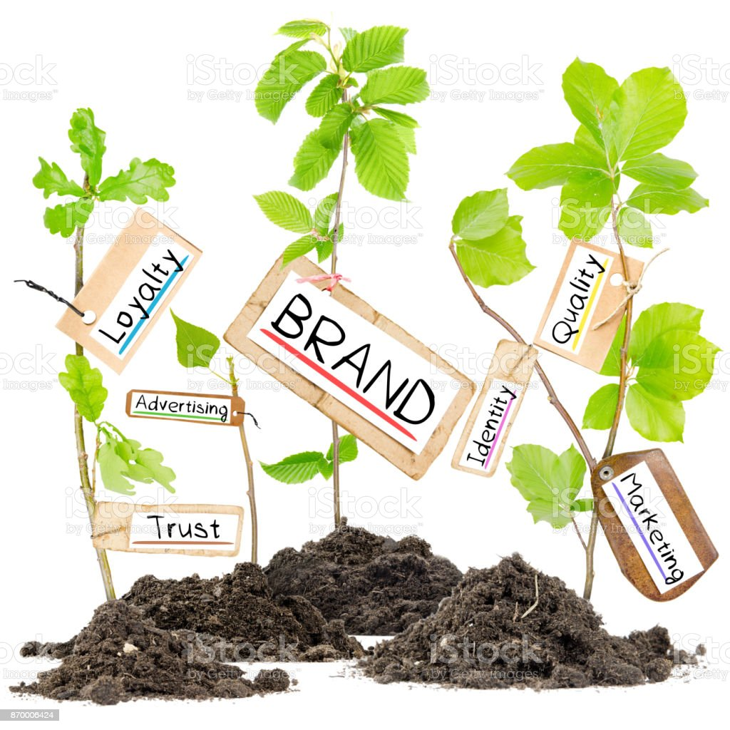 Plant Label Concept stock photo