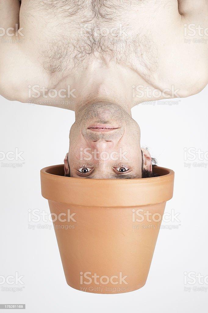 Plant man royalty-free stock photo