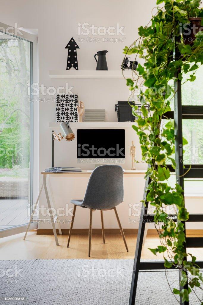 Pflanze Auf Leiter Im Weißen Haus Büroeinrichtung Mit Fenster Und