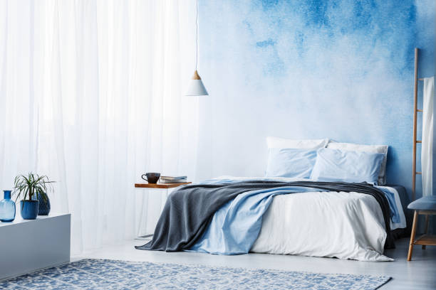 plant on white cupboard in spacious blue bedroom interior with grey blanket on bed - bedroom foto e immagini stock