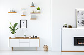 Plant on wooden white cupboard in apartment interior with posters and fireplace. Real photo