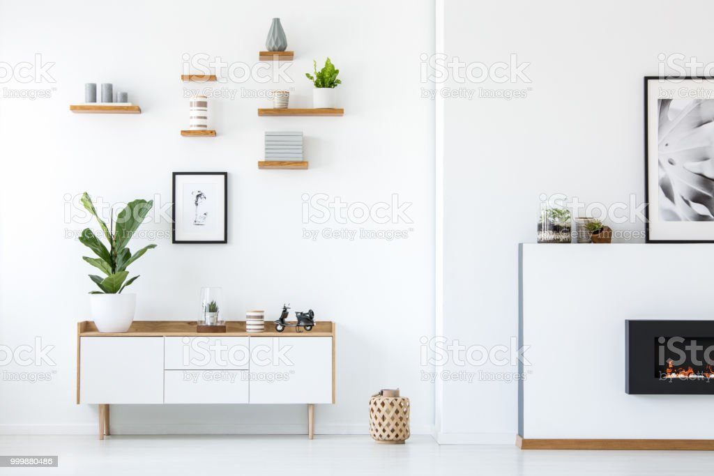 Plant on wooden white cupboard in apartment interior with posters and fireplace. Real photo stock photo