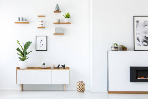 plant on wooden white cupboard in apartment interior with posters and fireplace. real photo - stile minimalista foto e immagini stock