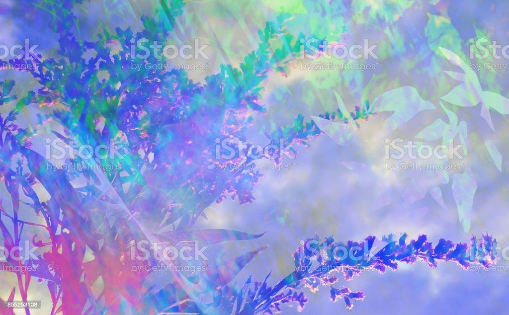 Plant Overlay stock photo