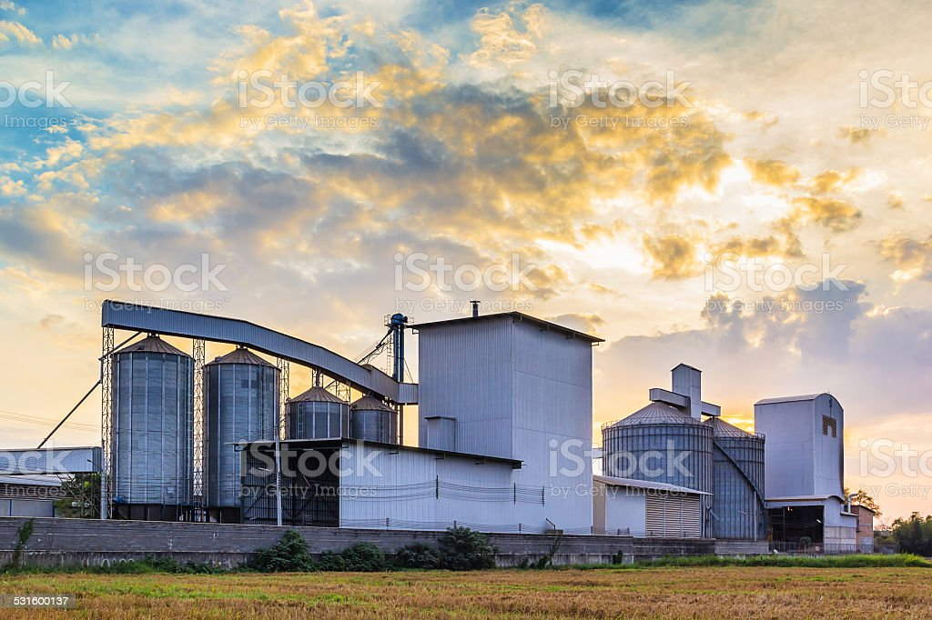 Plant Rice mill stock photo
