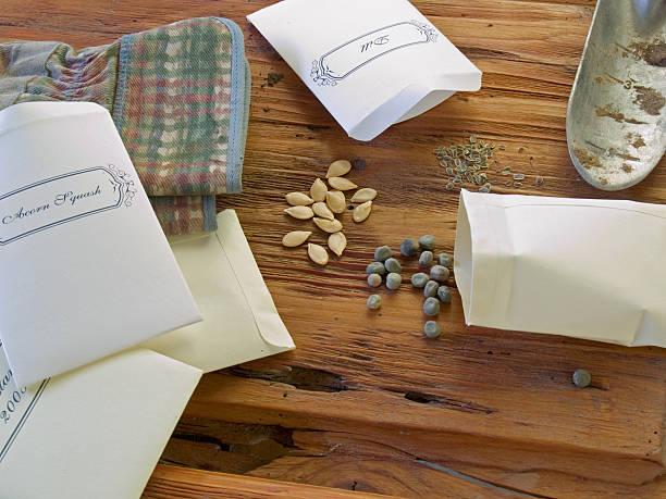 les graines des sacs pour planter - graine photos et images de collection