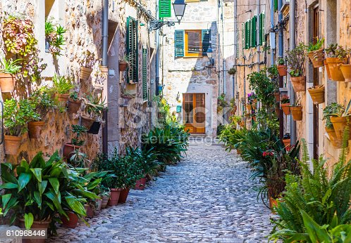 istock Plant Street in Valldemossa, Majorca 610968446