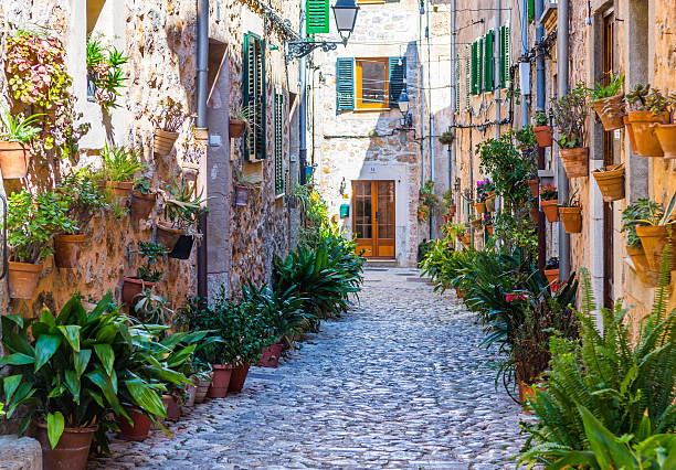 Plant Street in Valldemossa, Majorca stock photo