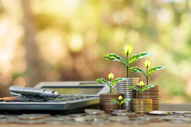 plantar árboles en monedas y calculadoras, conceptos de contabilidad financiera y ahorrar dinero. - financial planning fotografías e imágenes de stock