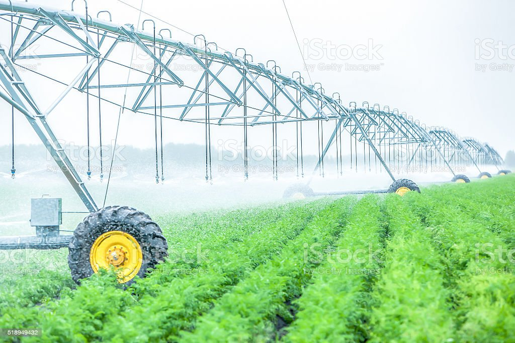 plant watering system at idustrial farm outside stock photo