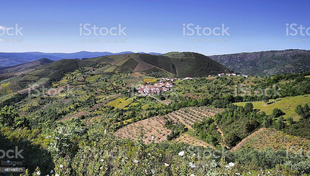 Plantation fields between villages of Sotoserrano and Lagunilla stock photo