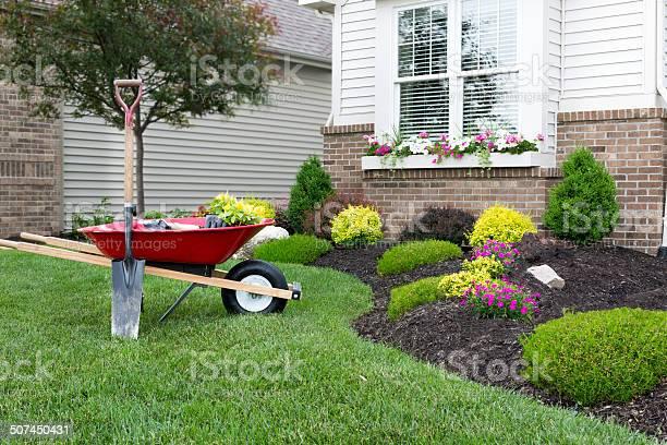 Planting a celosia flower garden around a house picture id507450431?b=1&k=6&m=507450431&s=612x612&h=g5vexp8ieyxnn0mdsjtmclhpblc6wxxcvkfjfkunua0=