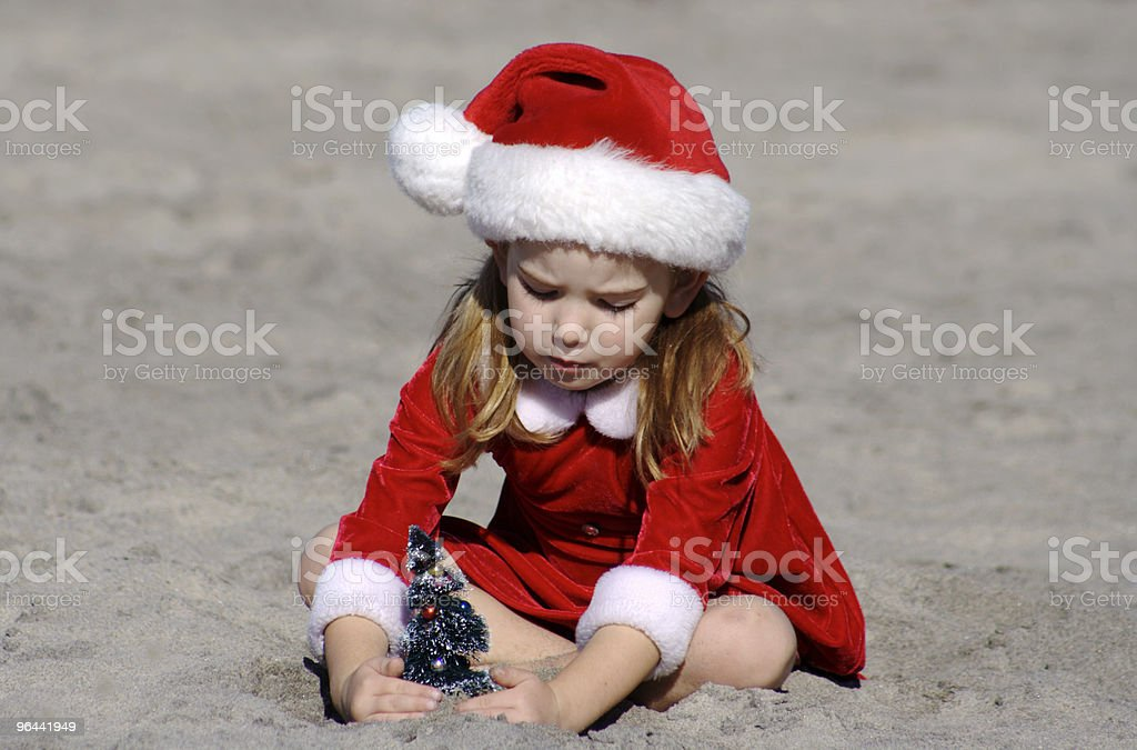 Planting a Christmas Tree on the Beach-Series - Royalty-free 4-5 jaar Stockfoto