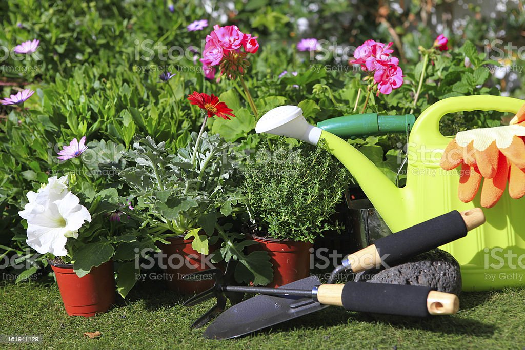 planting flowers with garden tools royalty-free stock photo