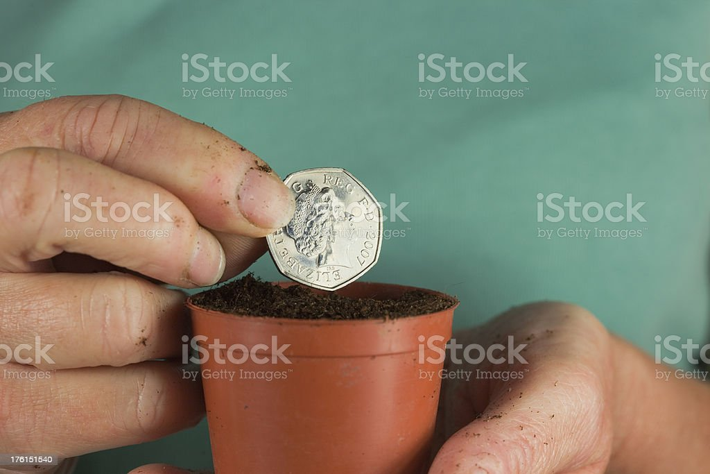 Planting Money For Growth stock photo