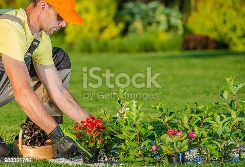 Caucasian Gardener Planting New Flowers in the Backyard Garden.