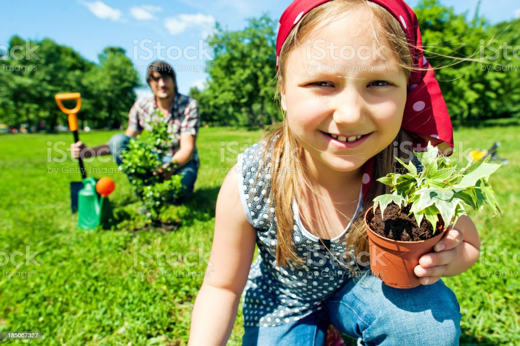 Planting royalty-free stock photo
