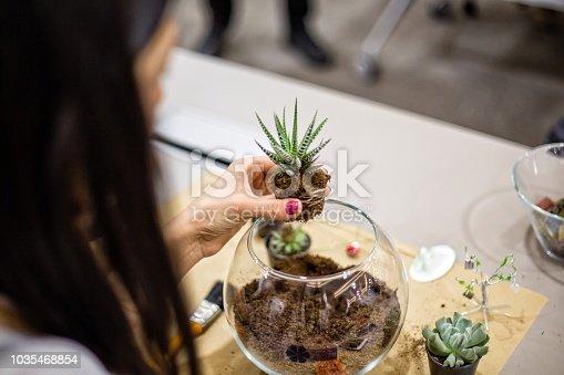 Planting succulent in a terrarium workshop