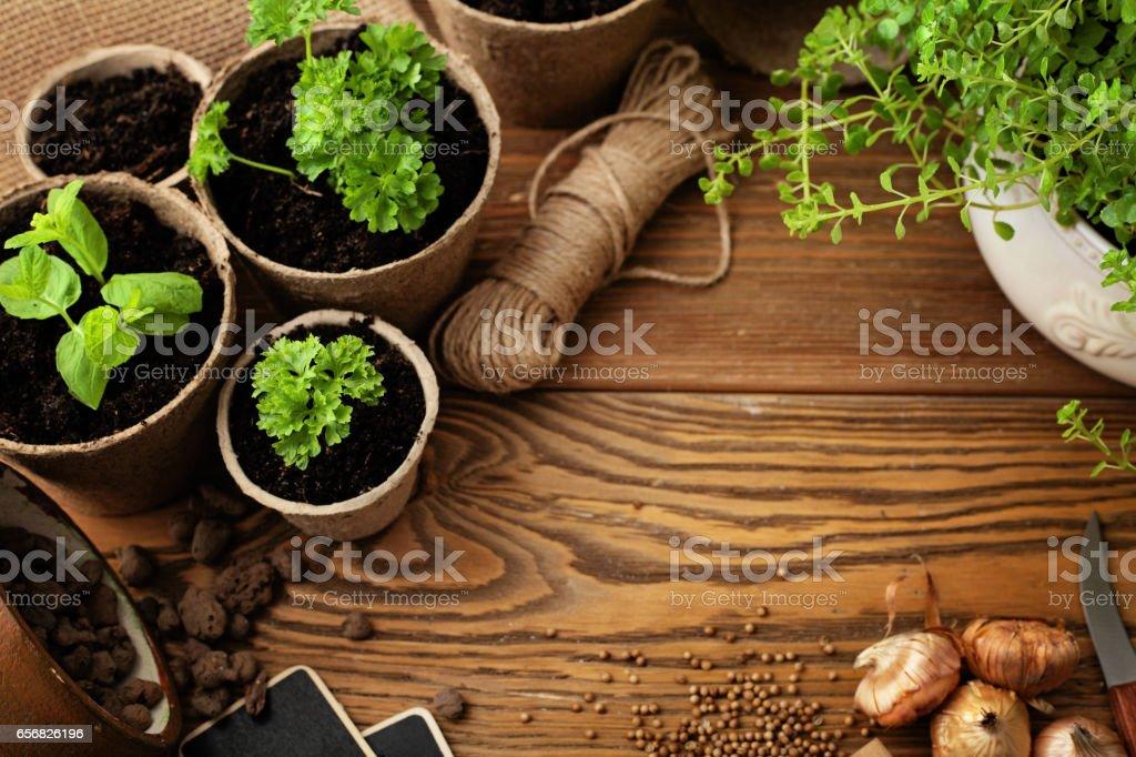 planting tools stock photo
