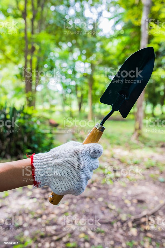 Planting with trowel royalty-free stock photo