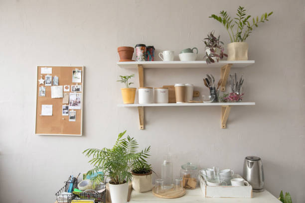 Plants and kitchenware in kitchen stock photo