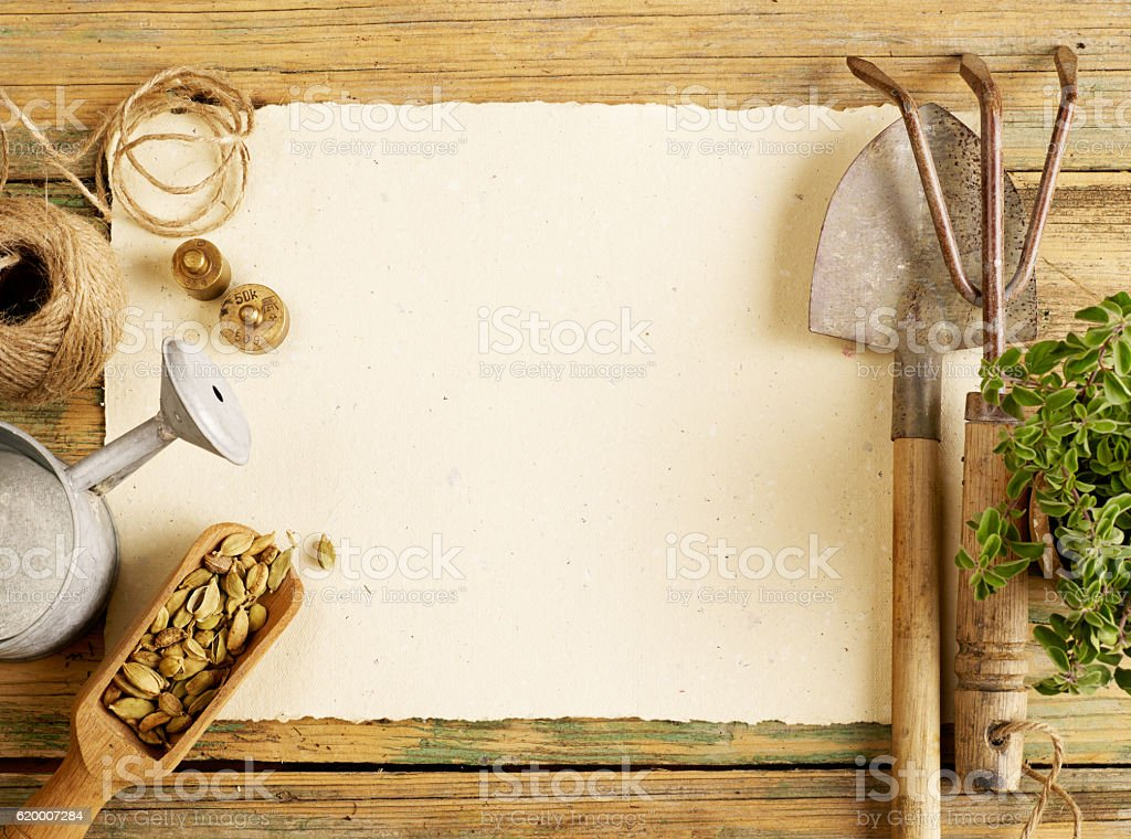 Plants, gardening tools and blank paper stock photo