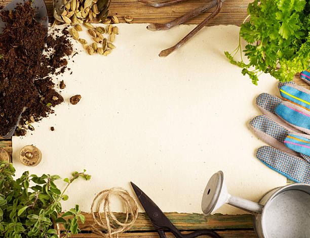 plants,  gardening tools and blank paper - 원예 장갑 뉴스 사진 이미지