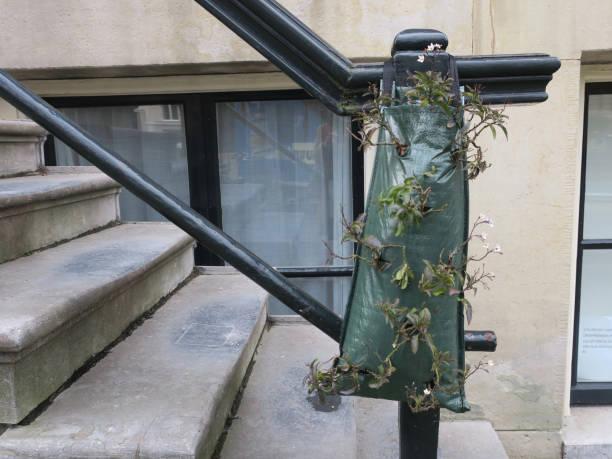 planten die in een groene plastic zak groeien die op de leuning hangt foto